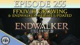 Final Fantasy XIV is Growing & EW Website Updated | SoH | #255
