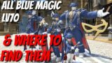 Where to Find and Learn ALL Blue Magic [Lv70] | FFXIV